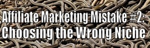 Affiliate Marketing Mistake #2: Choosing the Wrong Niche