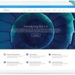 Wordpress Theme - Divi