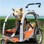 pet-stroller