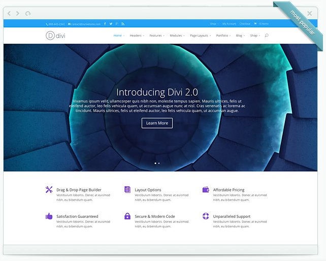 Wordpress Theme - Divi